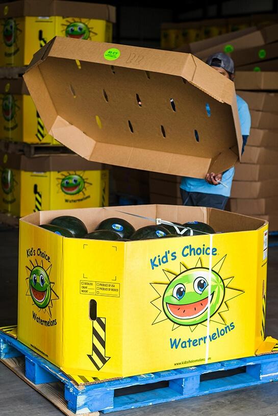 Nutrition Kids Choice Watermelons shipped fresh