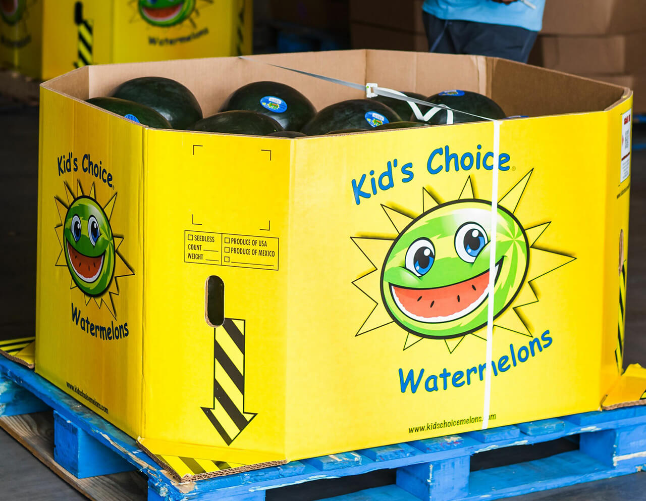 Kids Choice Watermelons Gallery look for our yellow boxes