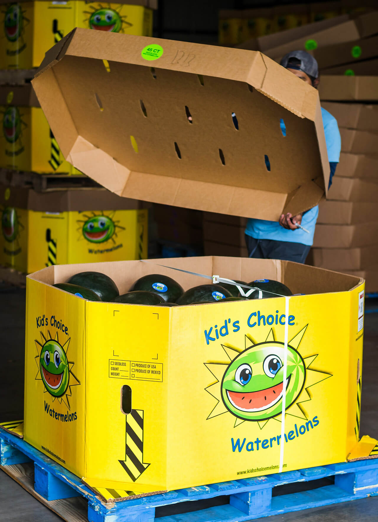 Our Boxes Kids Choice Watermelons