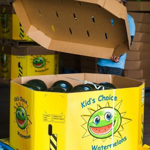 what we do kids choice watermelons where to buy